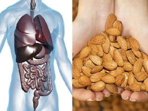 What Happens To Your Body When You Eat Almonds
