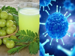 Amla Drinks To Boost Immunity In Winters