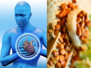 Amazing Health Benefits Of Pine Nuts