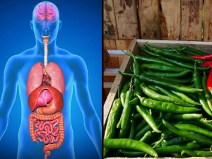What Happens When You Eat Green Chilli Every Day