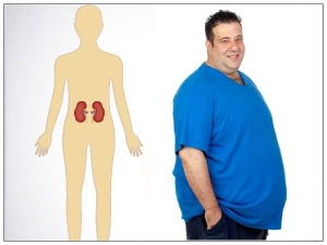 Obesity And Kidney Health Here S How The Two Are Linked To Each Other