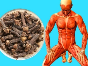 Health Benefits Of Eating 2 Cloves With Warm Water Before Sleeping In Tamil