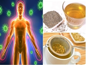 Fennel Cumin Tea Recipe To Boost Immunity In Tamil