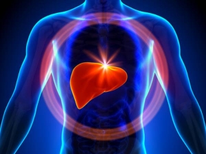 Best Food For Liver Health