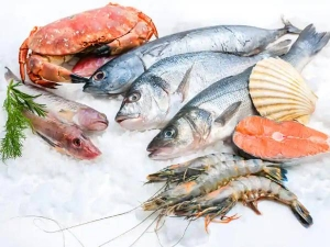 Seafood That Is Dangerous To Health