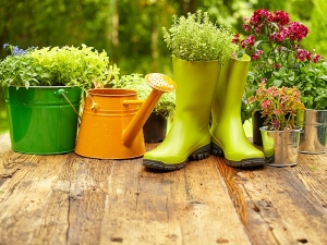 Gardening Mistakes You Didn T Know You Were Making