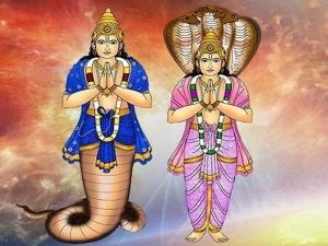 Ketu Nakshatra Transit 2021 In Anuradha Nakshatra Effects On All Zodiac Signs In Tamil