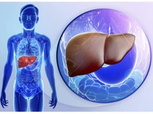 Liver Cirrhosis Early Signs And Symptoms In Tamil