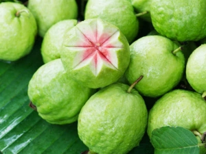 People Who Should Be Careful About Eating Guava