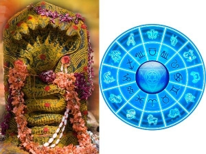 How To Worship On Nag Panchami As Per Your Zodiac Signs In Tamil