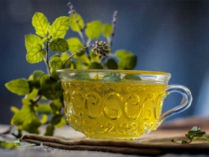 Health Benefits Of Drinking Tulsi Water On An Empty Stomach In Tamil