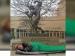 அர்னால்டு ஸ்வார்ஸ்னேக்கரும், ஹோட்டலில் நடந்த அவமானமும்...  - ரீலு அந்து போச்சு #001