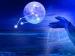 உங்க ராசிப்படி உங்க உடம்புக்குள்ள இருக்கிற அதீத ஆற்றல் என்னனு தெரியுமா? இத படிங்க...