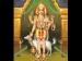 கால பைரவரை எப்படி வணங்க வேண்டும் தெரியுமா? #தேய்பிறைய அஷ்டமி